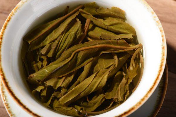 2016 Yunnan Sourcing 'Autumn Ye Zhu Tang' Wild Arbor Raw Puerh Tea Cake